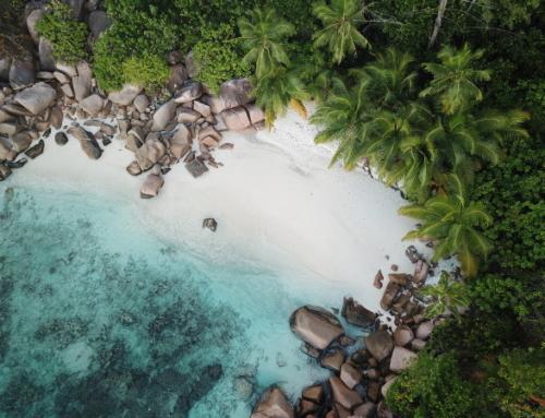 Auf Praslin bei der Coco de Mer